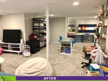 Basement Transformation After